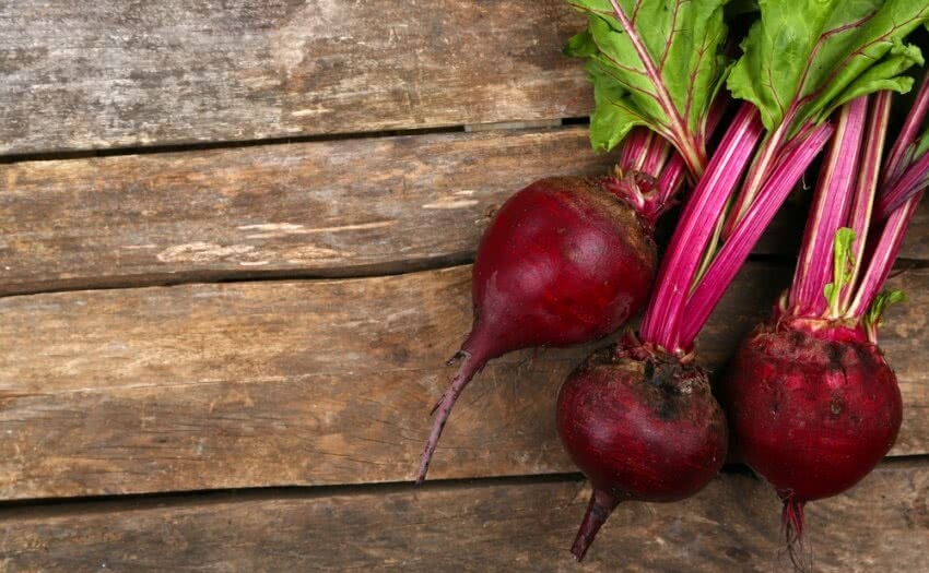Beetroot, kitchen garden, red beetroot, chard