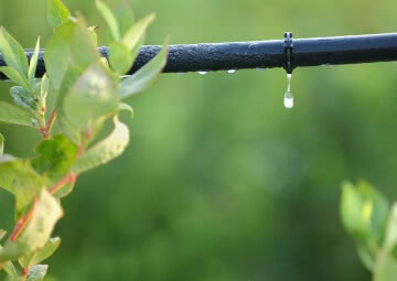 Drip Irrigation System, Plant Watering System