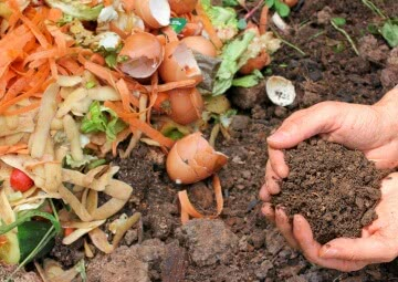 composting of waste