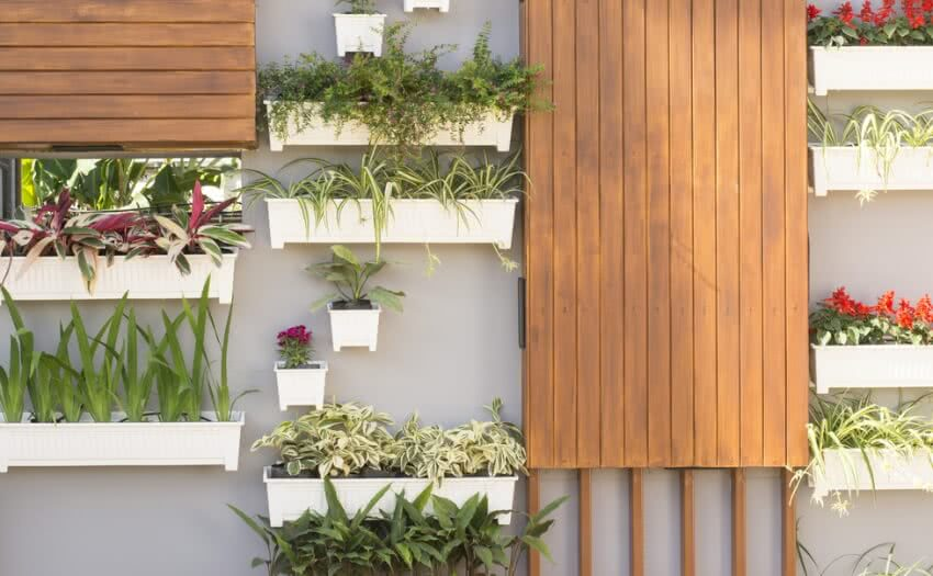 vertical kitchen garden
