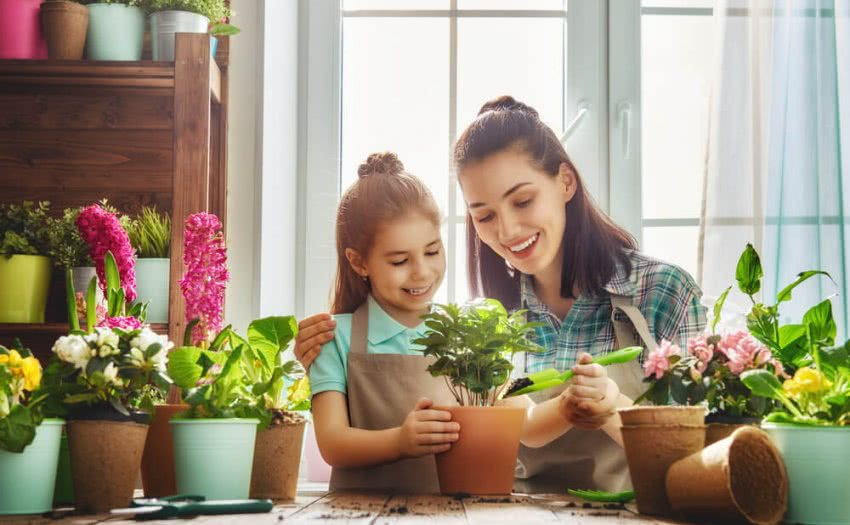 Gardening Mistakes to avoid for Beginners