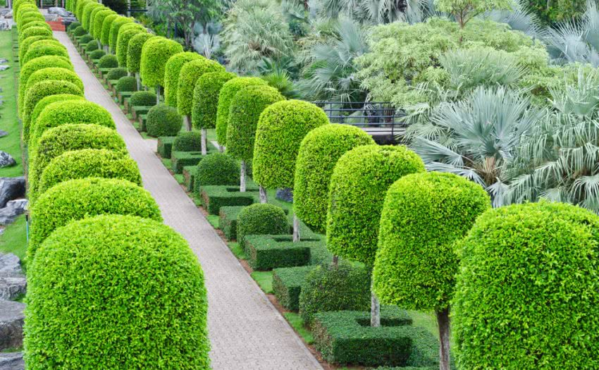 principles & elements of landscape design
