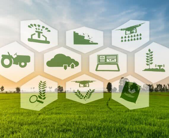future of agriculture in india