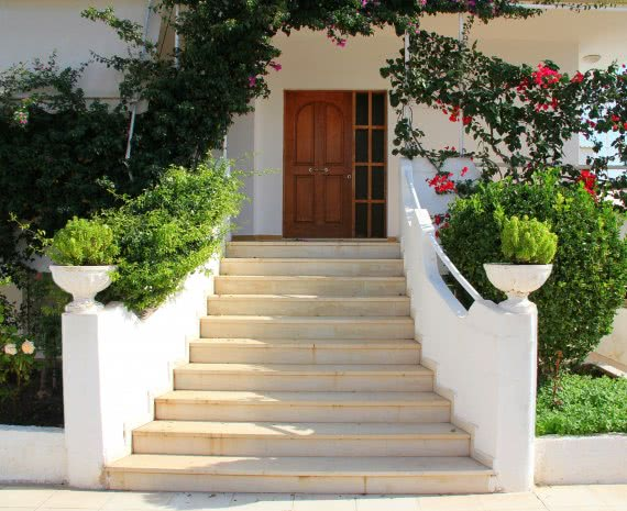 evergreen plants for home entrance