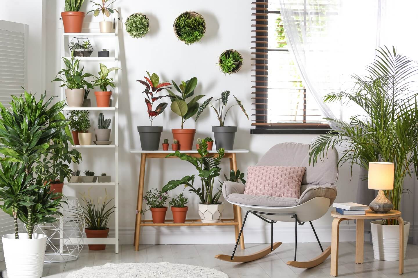 Living Room Indoor Plant Ideas To Give Your Home A Refreshing Look