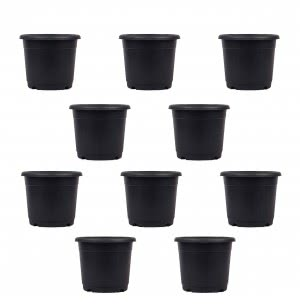 Marigold Plastic Pot Black Set of 10 - Diameter 9 Inch