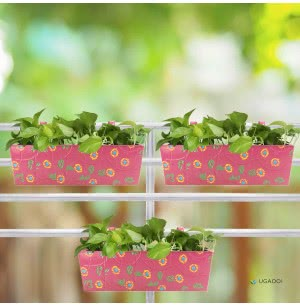 Rectangle Handpainted Planter - Set of 3 - Pink