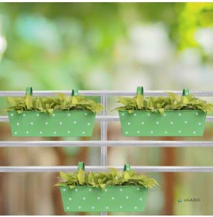 Rectangle Polka Dots Planter - Set of 3 - Green