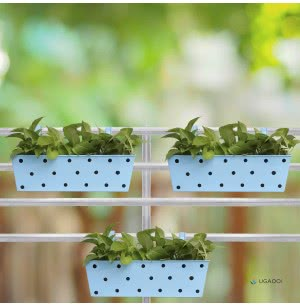 Green Girgit Rectangle Polka Dots Planter - Set of 3 - Sky Blue