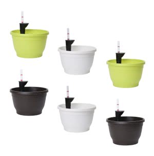 Tuka 25 Multicolour Self Watering Planter With Accessories