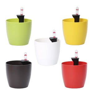 Ronda 14 Multicolour Self Watering Planter With Accessories