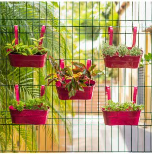 Green Girgit Oval Railing Planter Medium - Set of 5 - Pink