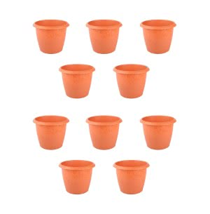 Palm Plastic Pot Set of 10 - Diameter 5 Inch