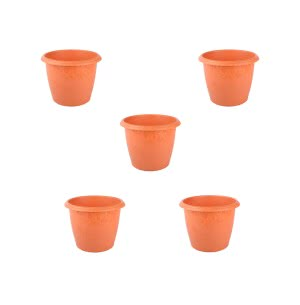 Danshil Palm Pot - 8""