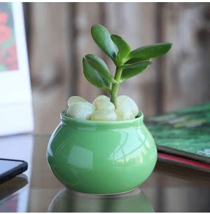 Handi Light Green Ceramic Pot- 3 Inch