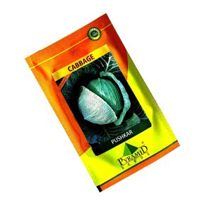 Hybrid Cabbage Seeds - Pushkar - 10 g