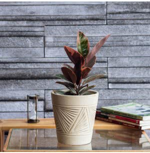 Matte Finish Beige Ceramic Pot With Pyramid Groove Pattern- 5.7 Inch
