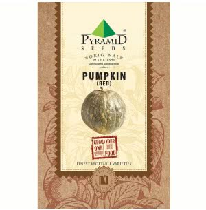 Red Pumpkin Vegetable- 25 Seeds
