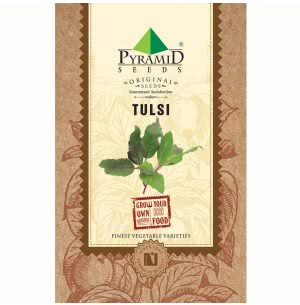 Tulsi Seeds (Holy Basil) - 25 g
