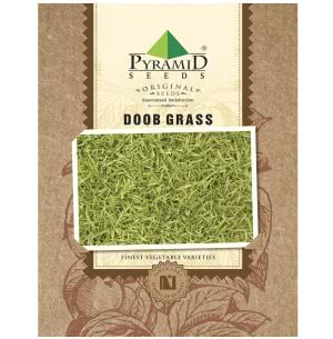 Doob Grass Seeds (Carpet Lawn) - 100 g