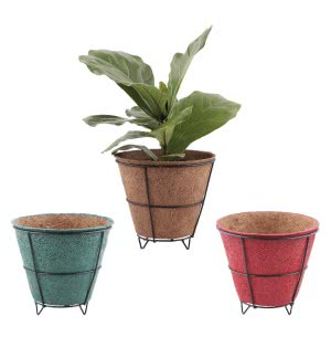 Coir Pots Multicolor 8 in. With Metallic Stand - Set of 3