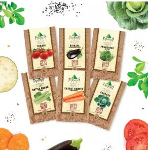 Indian Vegetable Seeds Combo of 6 Packet