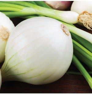 White Onion Vegetable Seeds