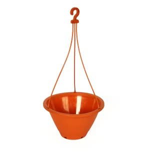 Danshil Climber Hanging Pot - 8.6 Inches