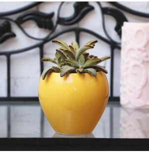 Apple Ceramic Pot- 4 Inch