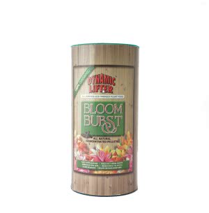 Bloom Burst-Plant Food - 1 kg