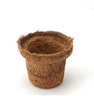 Seedling Coir Pot - Small (Set of 15)