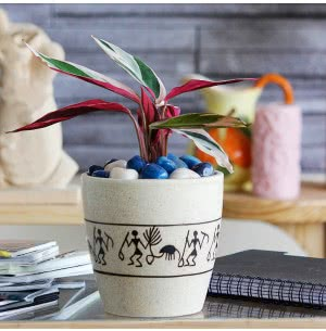 Damru Matte Finish Ceramic Pot (5.5 Inch Diameter)