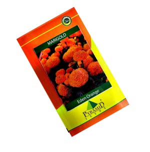 Hybrid Marigold Seeds- Eden Orange