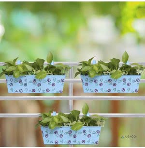 Green Girgit Rectangle Handpainted Planter - Set of 3 - Sky Blue