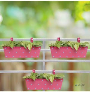 Green Girgit Rectangle Polka Dots Planter - Set of 3 - Pink