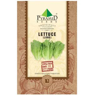 Lettuce Romaine Vegetable Seeds (Long) Seeds