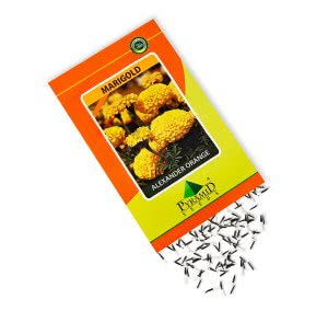 Marigold Flower Seeds-Alexander Orange - 25 g
