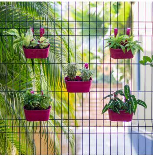 Green Girgit Oval Railing Planter Small - Set of 5 - Pink