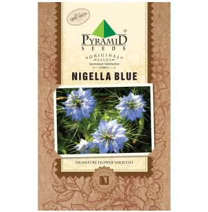 Nigella Blue Flower Seeds