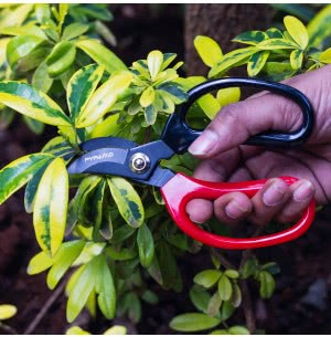 Green Seasons Curved Blade Cutter-D Handle