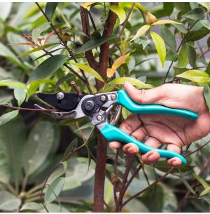 Green Seasons Deluxe Alum By Pass Rose Pruner