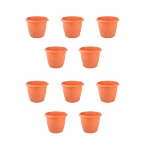 Palm Plastic Pot Set of 10 - Diameter 4 Inch