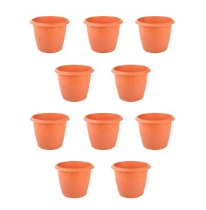 Palm Plastic Pot Set of 10 - Diameter 6 Inch