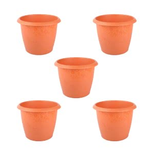 Palm Plastic Pot Set of 5 - Diameter 10 Inch