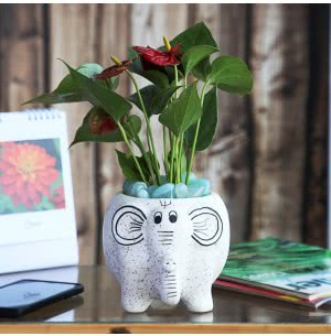 Elephant Matte Finish Ceramic Pot- 7 Inch