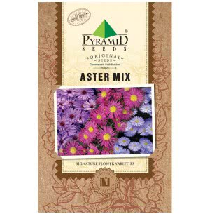 Aster Mix Flower (200 Seeds)