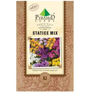 Statice Mix Flower (25 Seeds)
