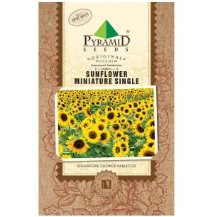 Sunflower Miniature Single Seeds