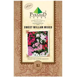 Sweet William Mixed Seeds
