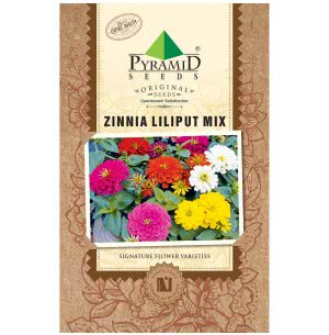 Zinnia Lilliput Mix (200 Seeds)